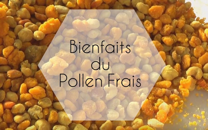Bienfaits Pollen frais